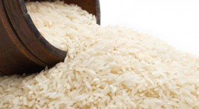 bosto rijst